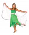 Carnavalskleding Elfen jurk voor dames