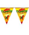 Zuid Amerikaans feest vlaggenlijn Fiesta